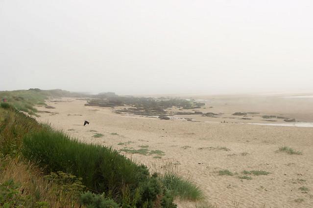 beach dornoch