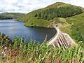 llyn-clywedog-dam.jpg