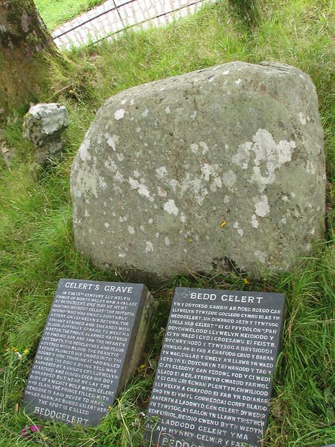 bedd gelerts grave