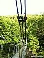 Horse-shoe_falls_Thomas_Telford_24th_july_086.JPG