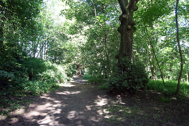 birnam wood walk